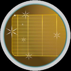 Golden Fin Coating